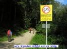 Berchtesgaden, Steinberg und Schärtenspitze_1