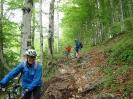 MTB-Tour Eibenberg_4