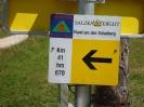 MTB-Tour Schafberg
